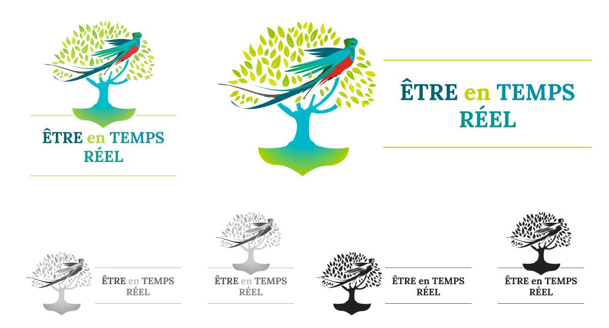 Déclinaison du logo selon format et mode chromatique